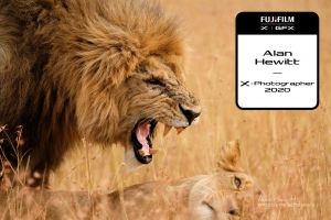 Alan Hewitt Wildlife Photographer, Offical FUJIFILM X-Photographer