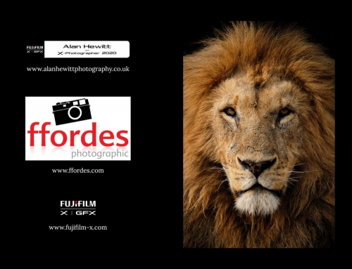 Online Event with Ffordes Photographic, 17th December 2020