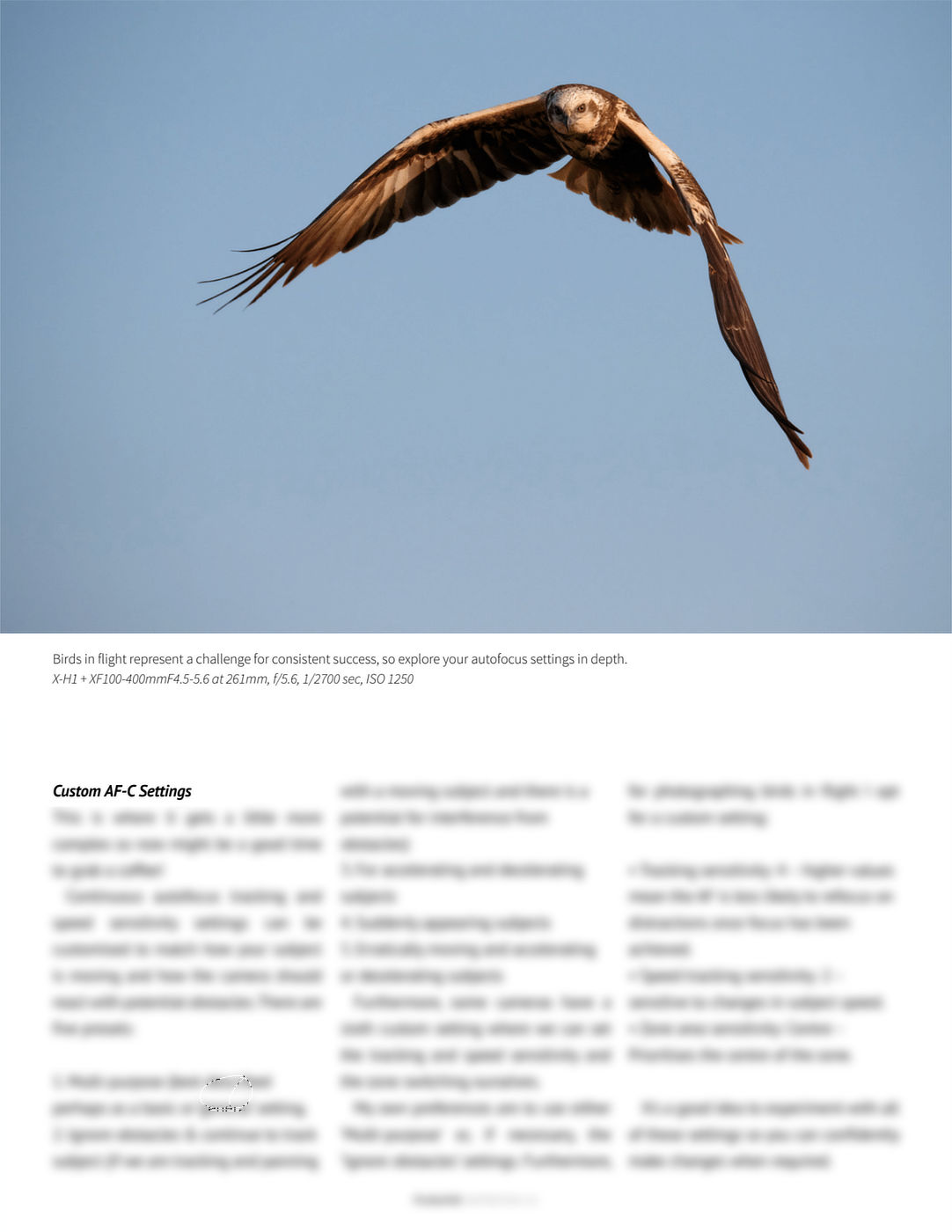 Fujilove Magazine Alan Hewitt Getting to Grips with Wildlife Photography