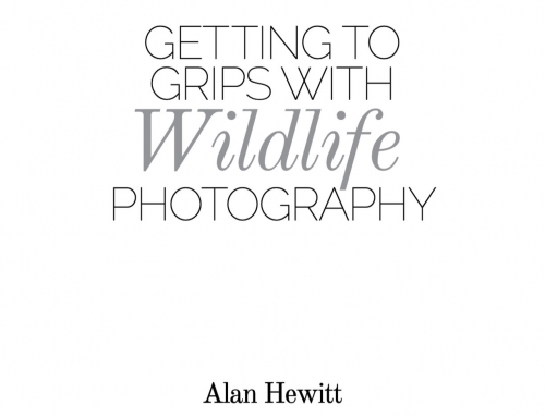 FUJILOVE Magazine – Getting to Grips with Wildlife Photography