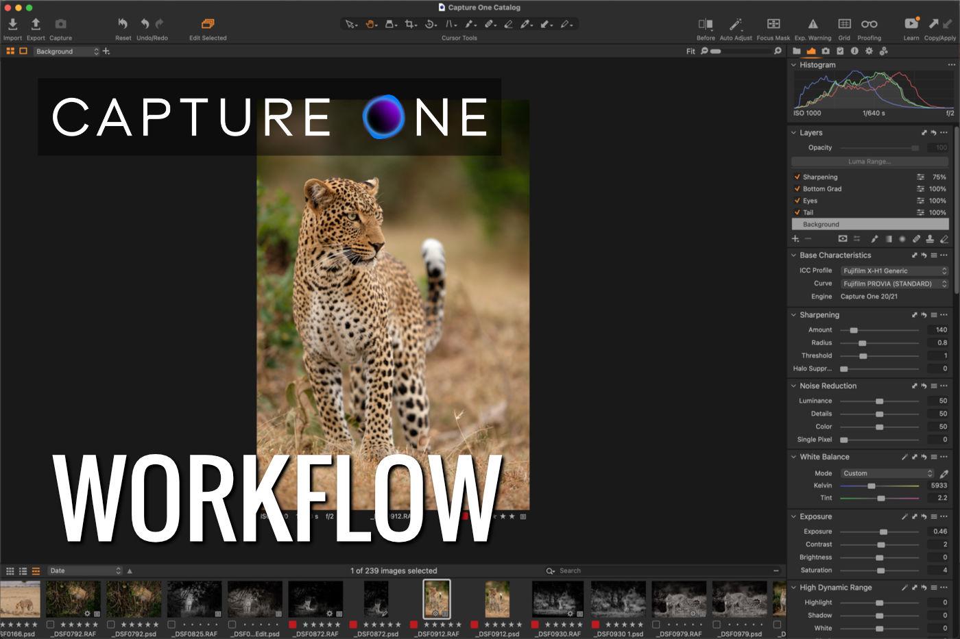 Capture One Workflow Zoom Workshop