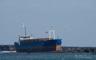 MV Danio Grounded on the Blue Caps, Farne Islands. Alan Hewitt Photography.