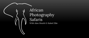 African Photography Safaris Alan Hewitt Photography