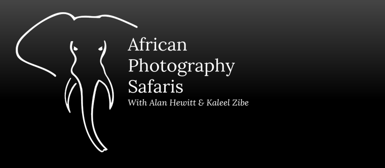 African Photography Safaris Alan Hewitt Photography